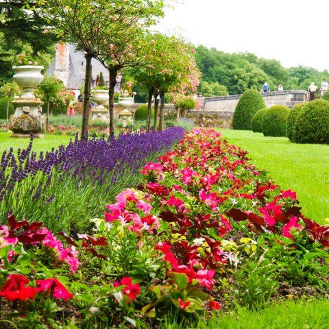 Un joli jardin fait par un paysagiste